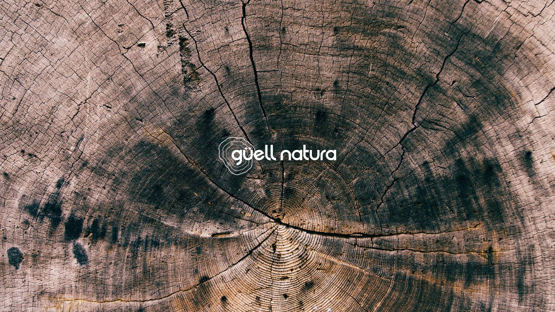 Proyecto de branding: Aplicación del logo Güell Natura