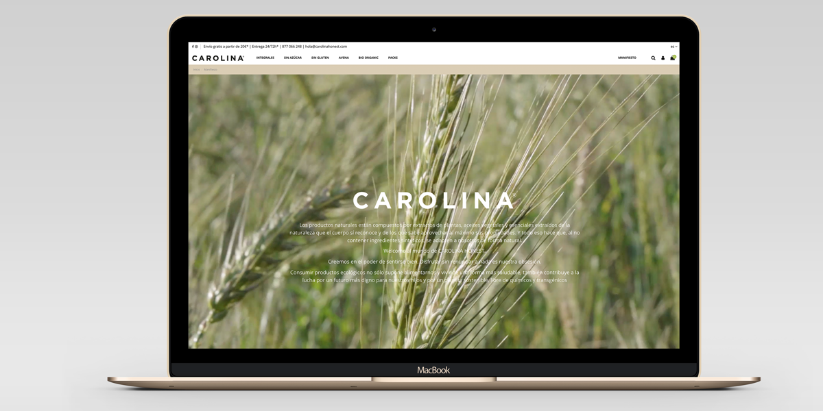 Creación de tienda online en Tarragona