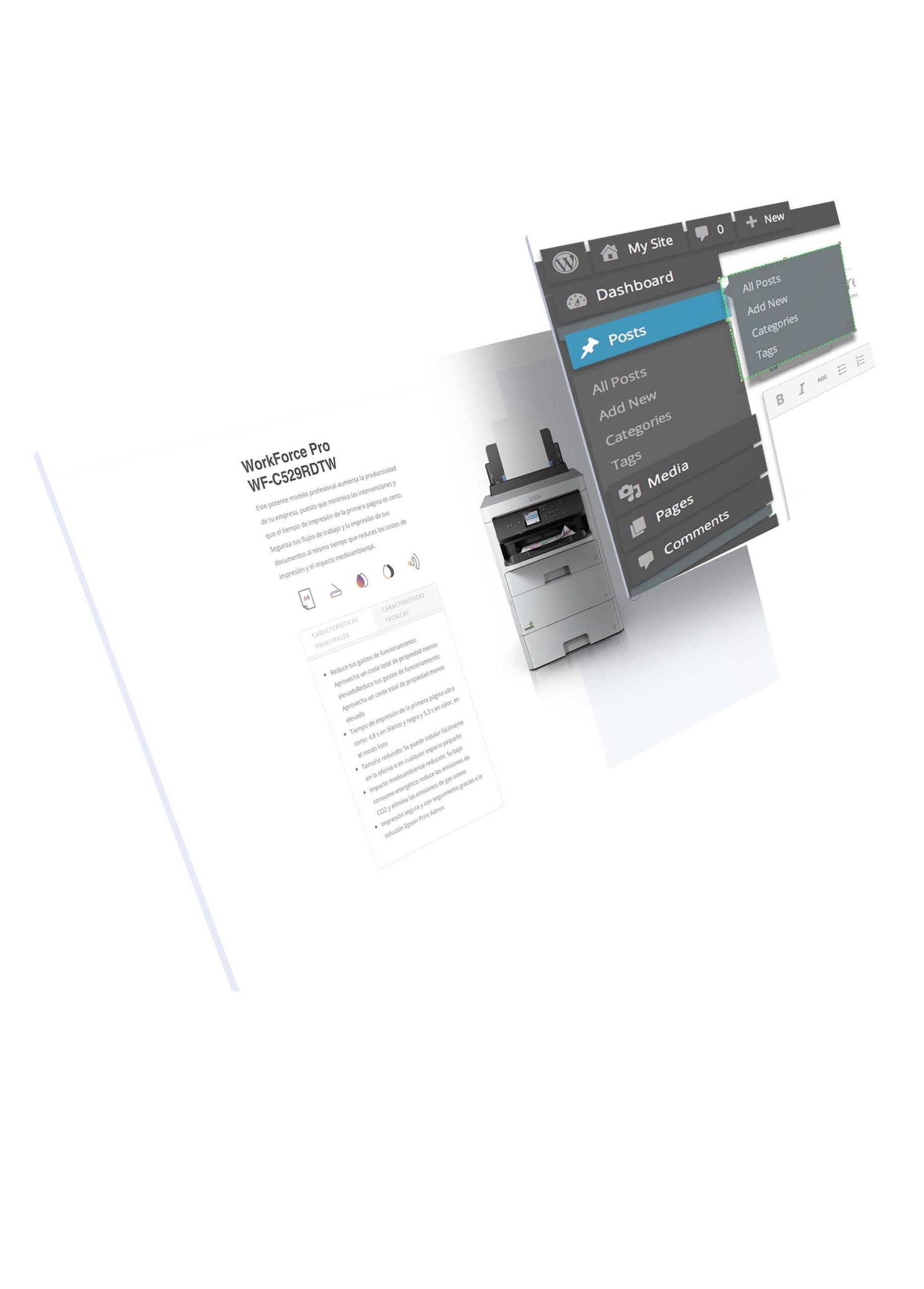 Diseño web en WordPress para empresas
